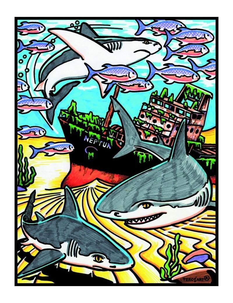 Coloriage requin - Modele dessin requin ...