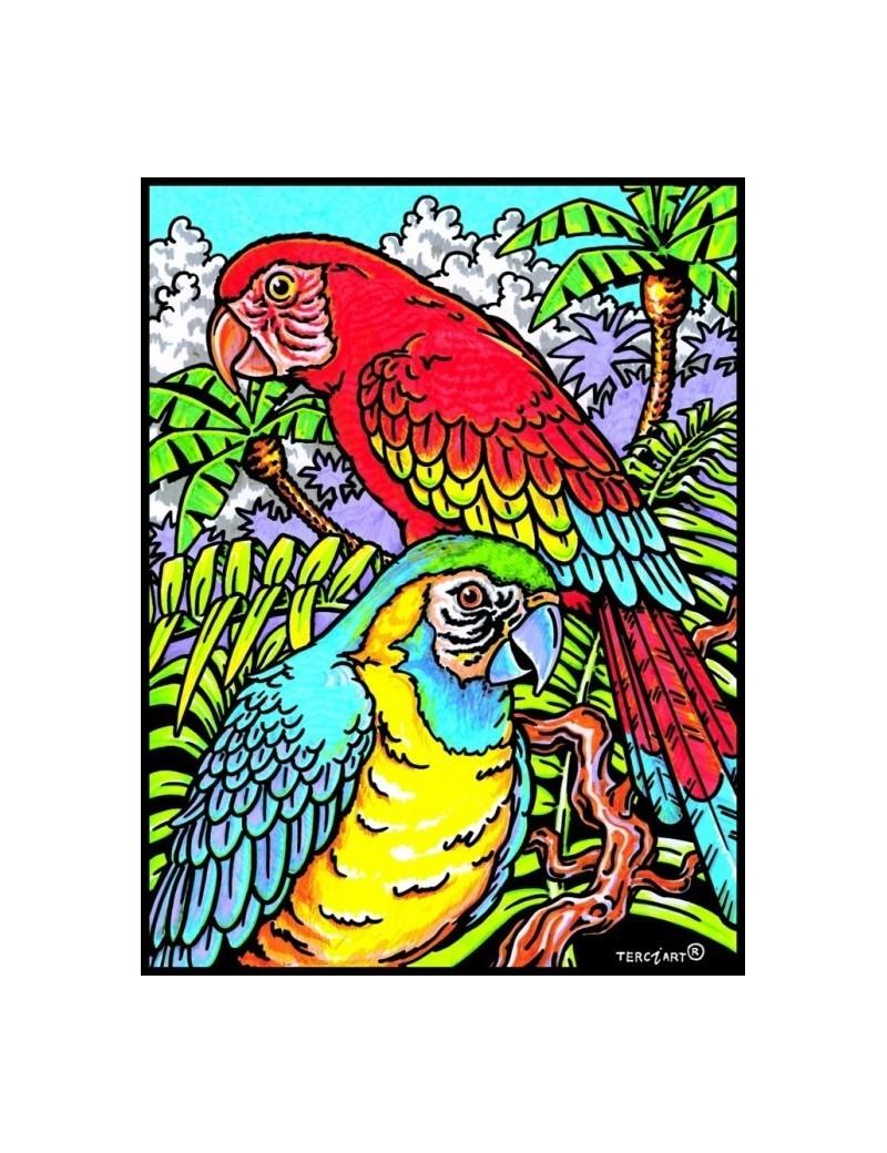 Coloriage velour perroquet - Perroquet a colorier ...